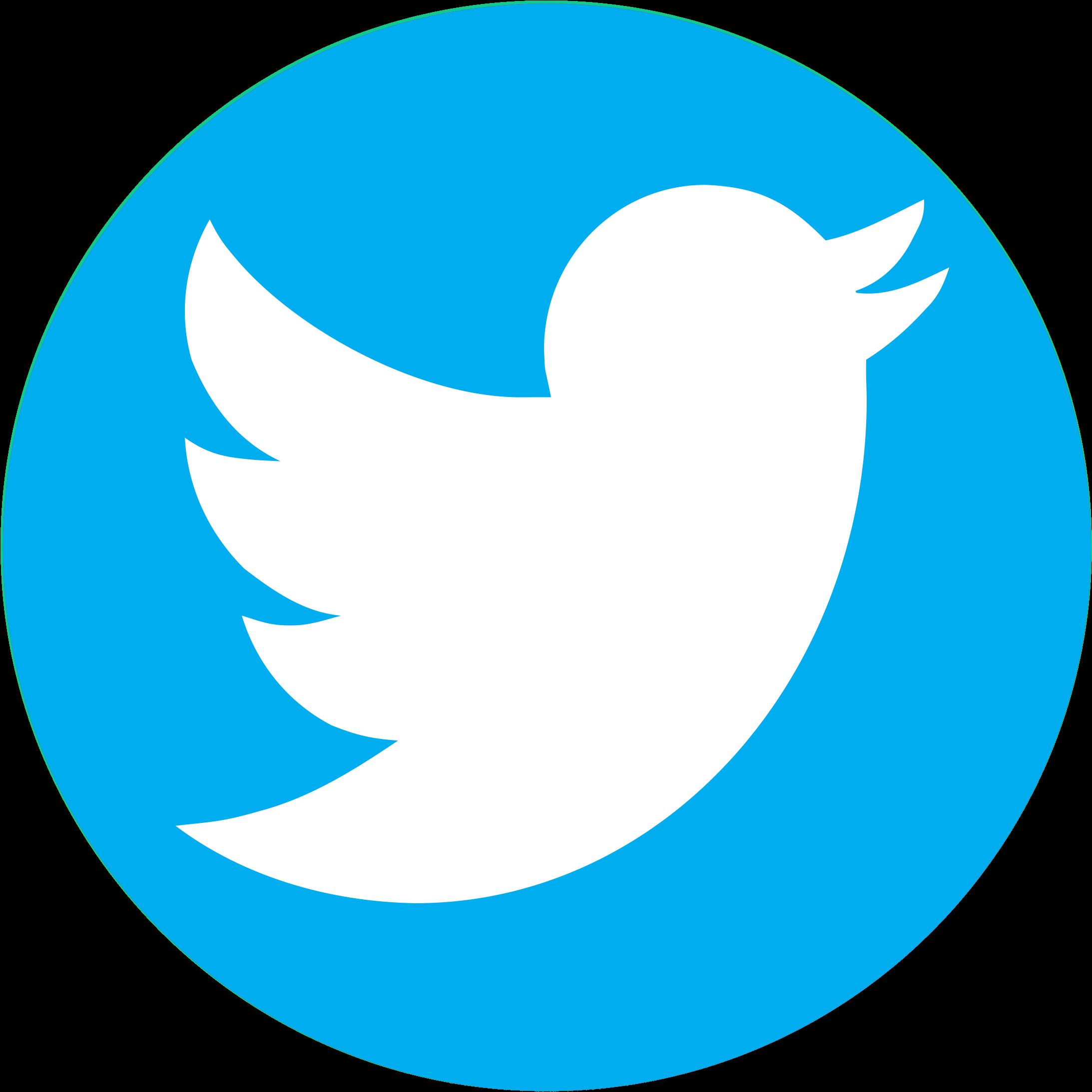 pnglot.com-twitter-bird-logo-png-139932 | OpenVisual FX